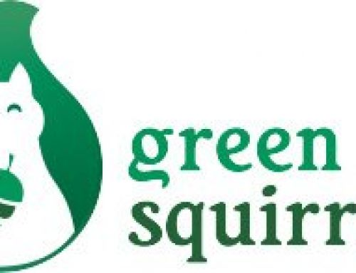 An Interview with Green Squirrel