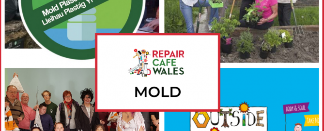 Mold Organisations
