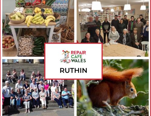 Ruthin – Shining a Light on the Landscape of Sustainability